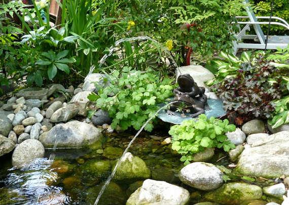 15-garden-pond-r