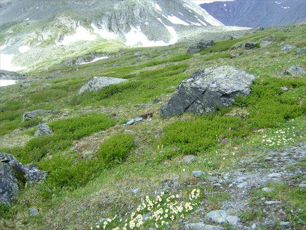 альпийский ландшафт в долине 7 озер на алтае
