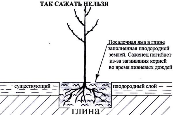 posadka-3
