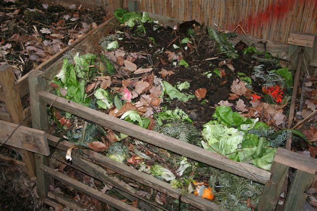 Kompost05