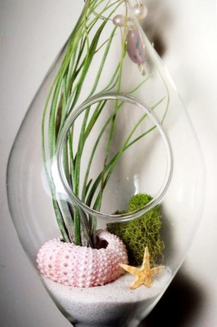 decorating-with-sea-urchins-ideas-26